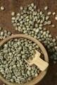 LOGO_Coffee beans