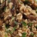 LOGO_Porcini mushroom risotto