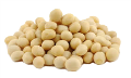 LOGO_Organic Soya Seeds