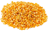 LOGO_Organic Corn Seeds