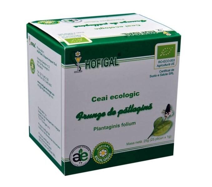 LOGO_THYME ORGANIC TEA 1.0g tea bags