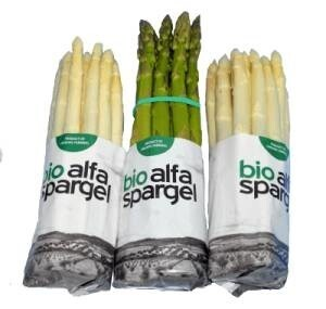 LOGO_Bio Alfa Spargel