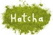 LOGO_HATCHA® - gemahlenes Hanfblattpulver