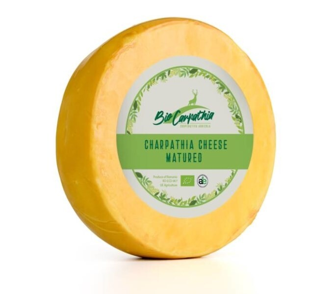 LOGO_CHEESE