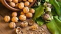 LOGO_wild organic walnuts