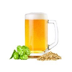 LOGO_RAW MATERIALS FOR BREWING
