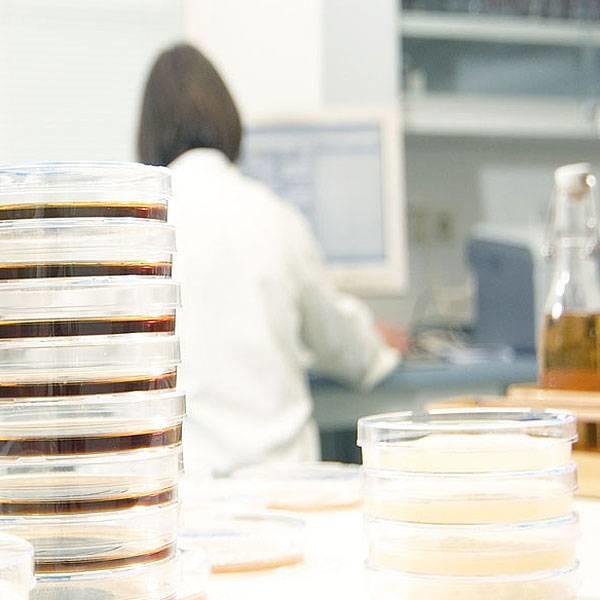 LOGO_Mikrobiologische Beratung von Mälzereien , Brauereien und Getränkeindustrie