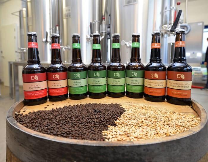 LOGO_Pilot Brewery