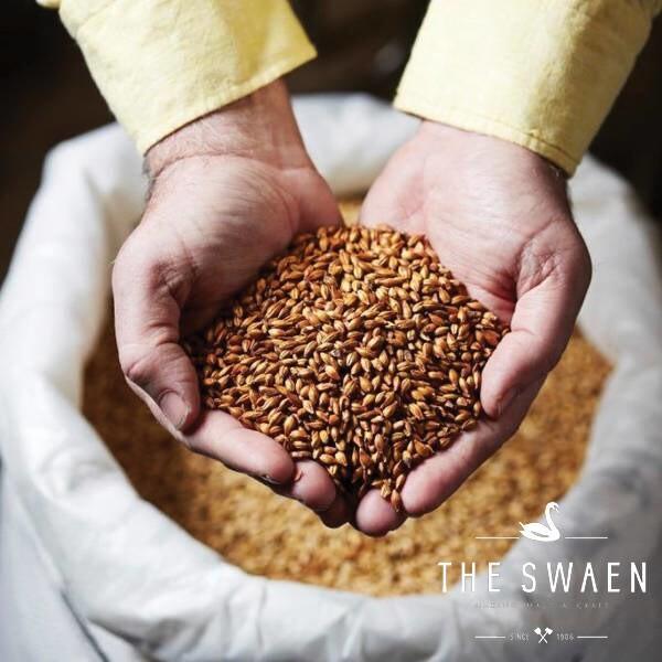 LOGO_Gold Swaen © Pure Cara (Caramel Malts)