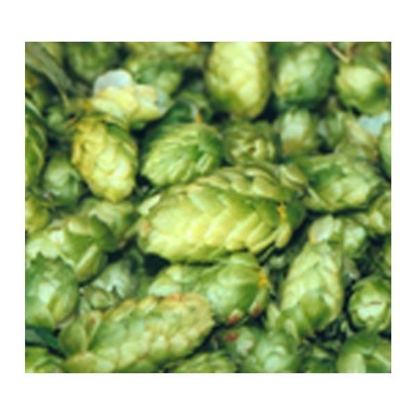 LOGO_Leaf hops