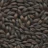 LOGO_Roasted malt