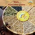 LOGO_Malts from other grains