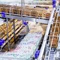 LOGO_BMS UNITRANS Series – Conveyor Systems / BMS UNICONTROL P – Pallet Control System