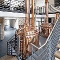 LOGO_Micro- and pub breweries