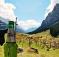 LOGO_Ringpull on a beer bottle for Heineken Group