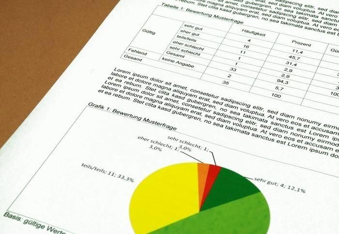 LOGO_Auswertung und Bericht
