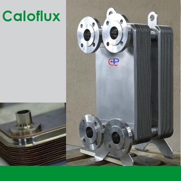 LOGO_Caloflux Heat Exchanger