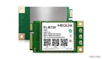 LOGO_4G LTE Module SLM750