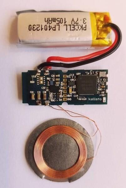 LOGO_Sensry Kallisto®