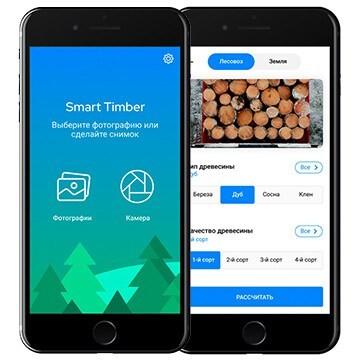 LOGO_Smart Timber