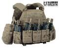 LOGO_Warrior Assault System DCS Plattenträger