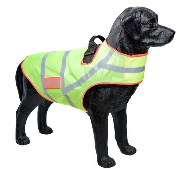 LOGO_Reflective collar for dogs Model 819