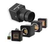 LOGO_Low Light Camera's