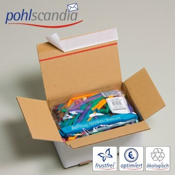 LOGO_SUSIBOX - Crash Lock Boxes with Peel and Seal