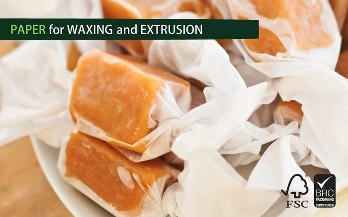 LOGO_Waxing and Extrusion Coating Paper 32-70 gsm