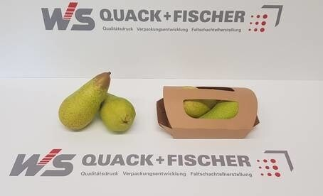 LOGO_Sustainable packaging made of folding carton for fruits and vegetables
