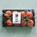 LOGO_Verpackungslizenzierung: Verkaufs- und Transportverpackungen