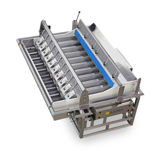 LOGO_Weightronic 1000 L Linear weigher