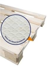 LOGO_Wooden Pallet with safetyPAL-Coating (anti-slip)