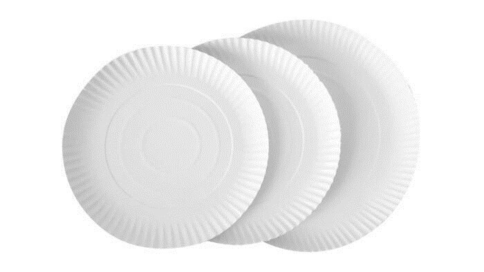 LOGO_Paper plates EXCLUSIVE
