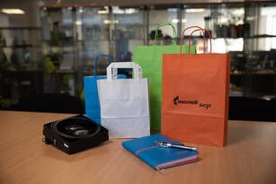 LOGO_Paper Carry Bags