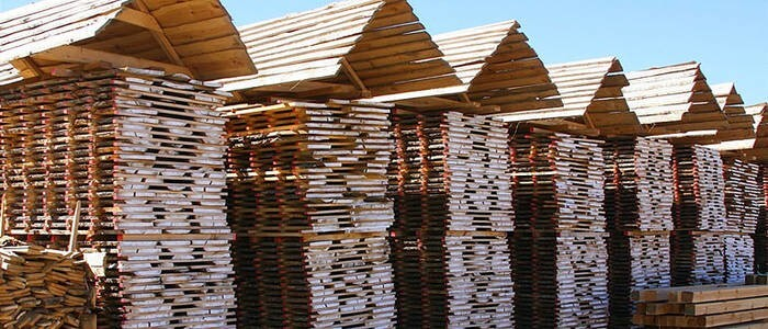 LOGO_Coniferous and hardwood timber