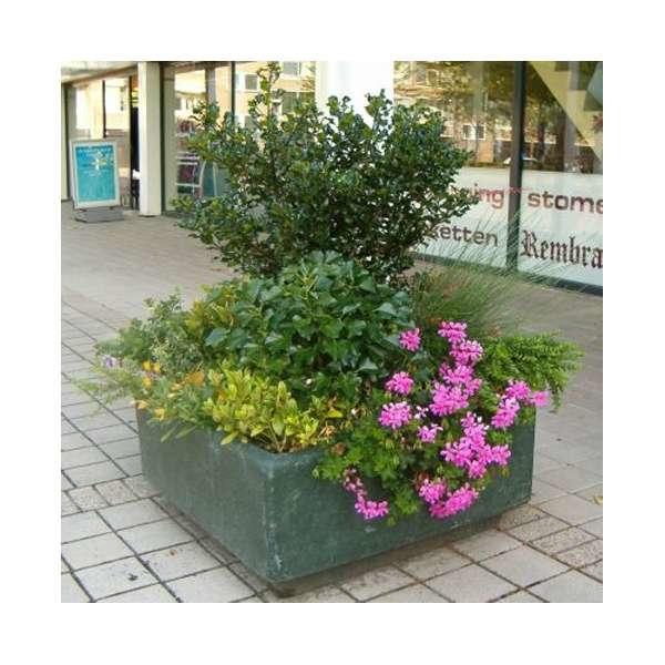 LOGO_Winterbepflanzung - Spijkenisse