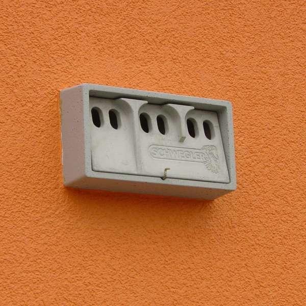 LOGO_1SP House Sparrow/Tree Sparrow