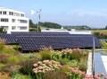 LOGO_Solar + Dachbegrünung