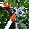 LOGO_pruning- and gardeningshears