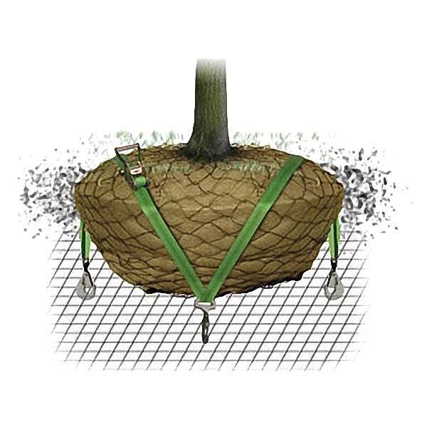 LOGO_Duckbill® Wuzelballenverankerungs-System für Dachbegrünung ( Duckbill® RBKW-DACH )