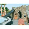 LOGO_Water Slides