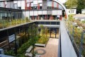 LOGO_Intensive Rooftop Landscaping