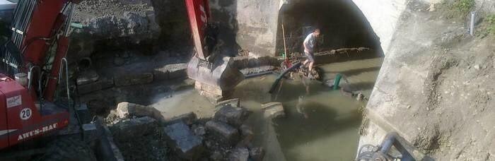 LOGO_Hochwasserschäden professionell beseitigen