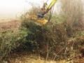 LOGO_Femac TE80REV Forestal Mulcher