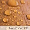 LOGO_NaturExpert Oils