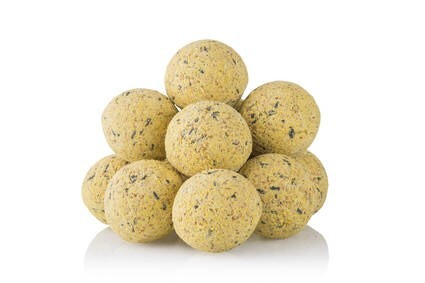 LOGO_Fat Balls