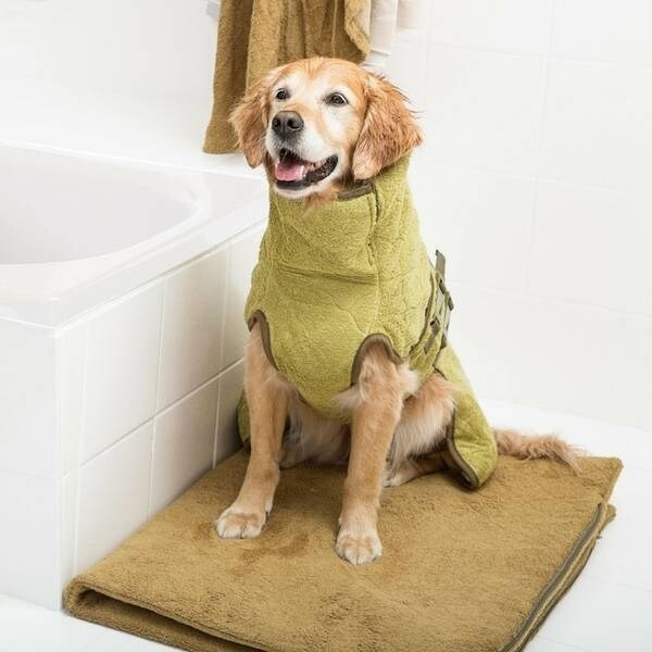 LOGO_FlexDog Mat - Hundematte