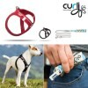 LOGO_Magnetic Vest Harness & Ultra Strong Pocket Leash