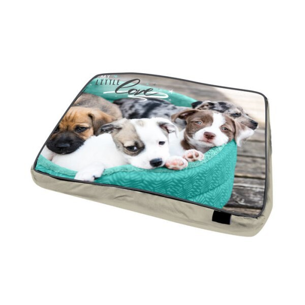 LOGO_Dog Pillow